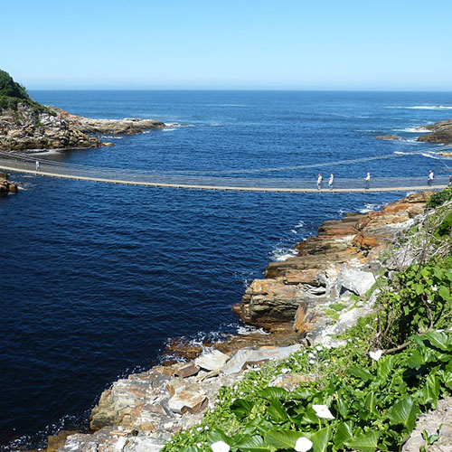 Garden-Route-Bridge